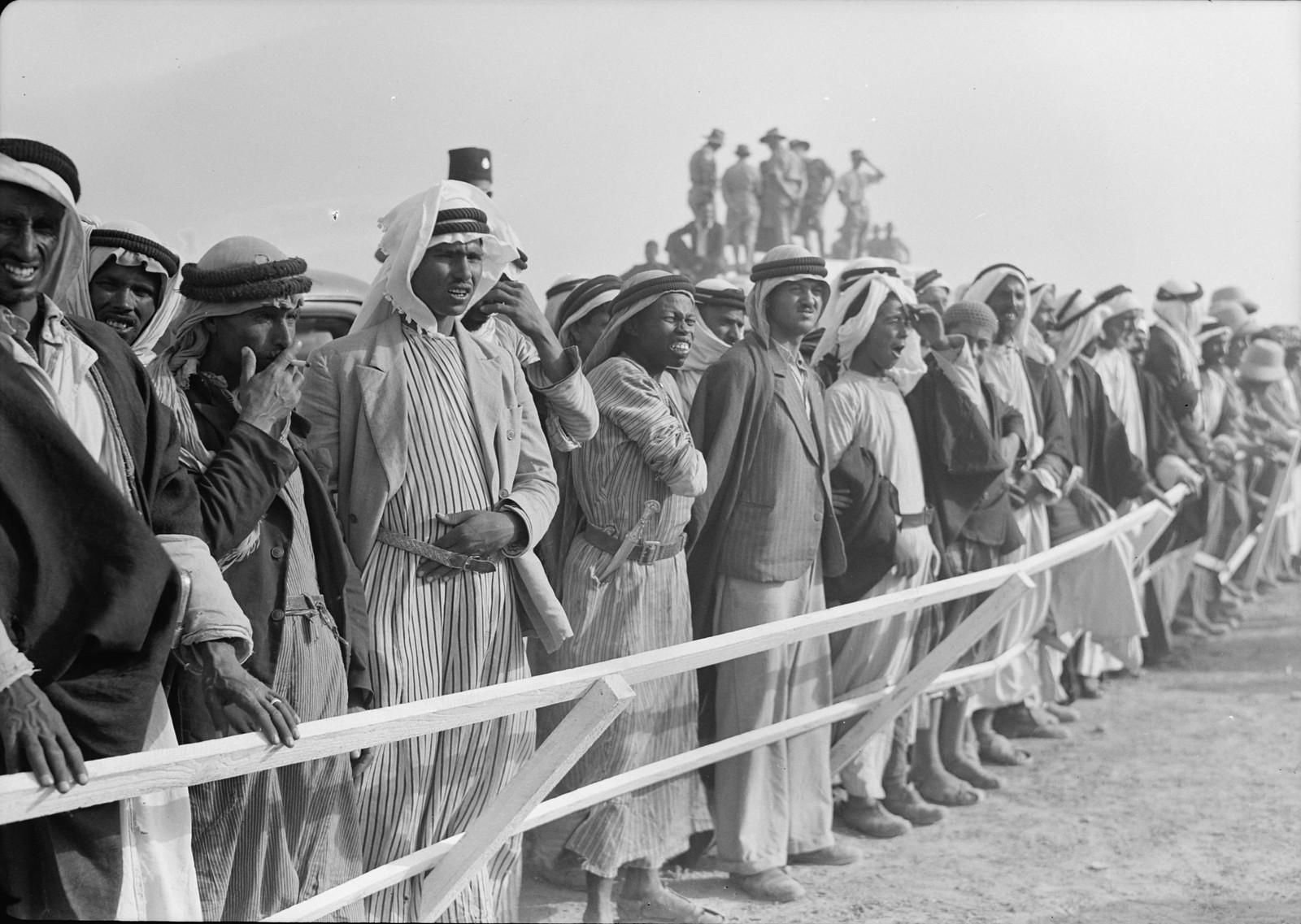 30. Бедуины вдоль трассы наблюдают за скачками