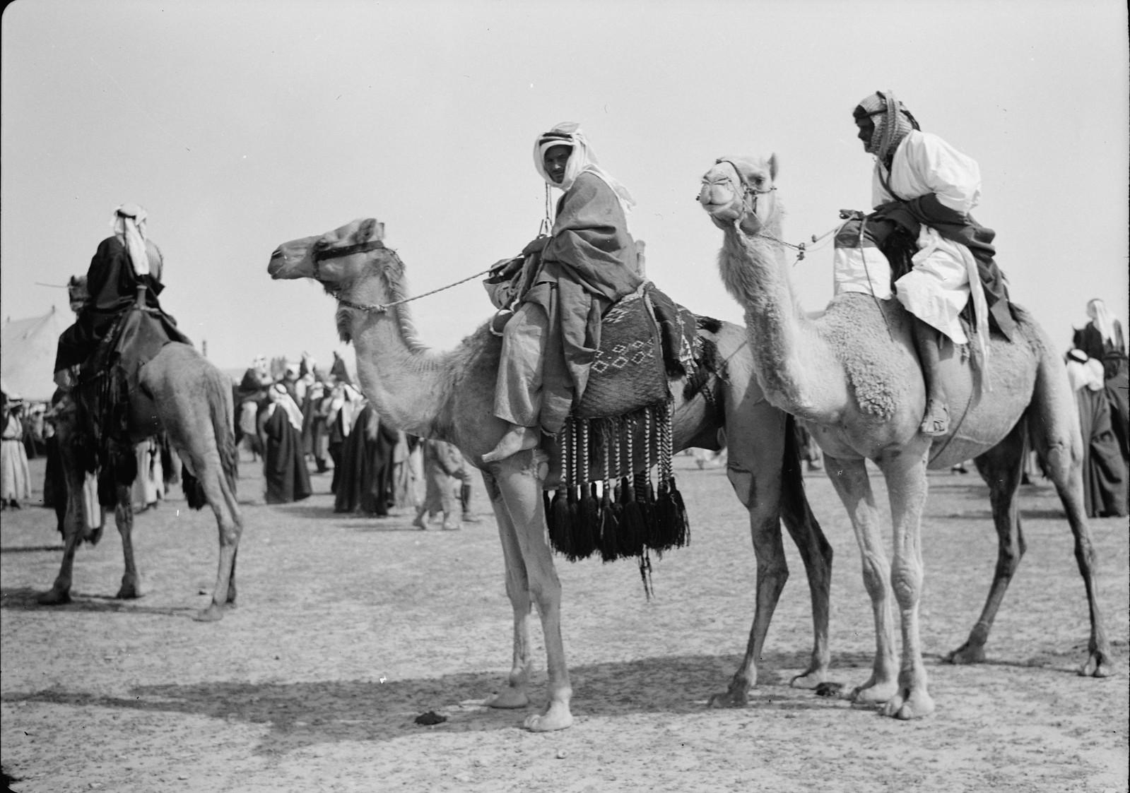 27. Парад верблюдов перед началом скачек