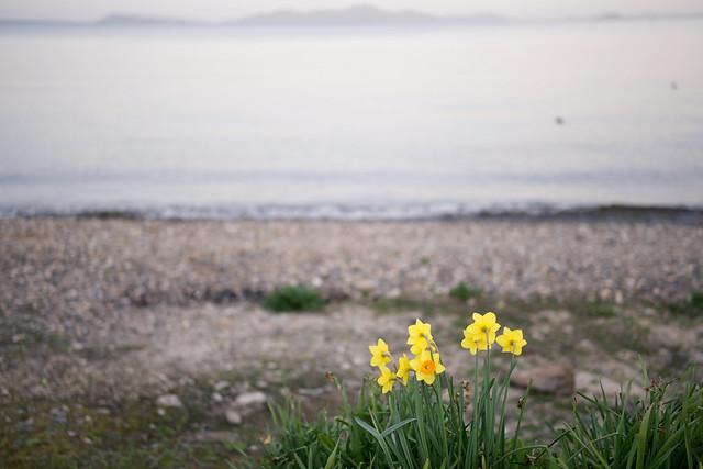 Lake Biwa 17