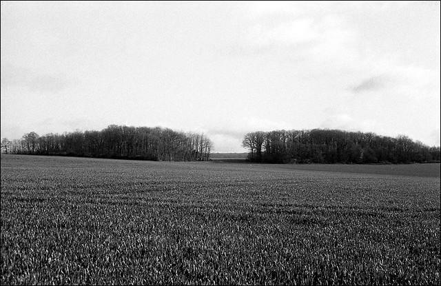 Plateau à La Grange au Doyen, Yonne.