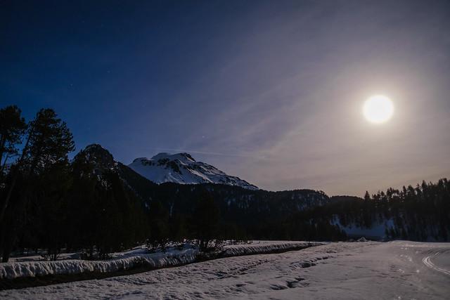 CH GR Vollmondnacht auf dem Ofenpass im Schweizerischen Nationalpark