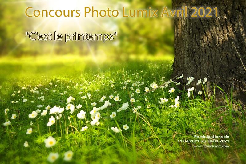 """Concours photos avril 2021 """"C'est le printemps"""" 51108730385_5b2b91322f_c"""