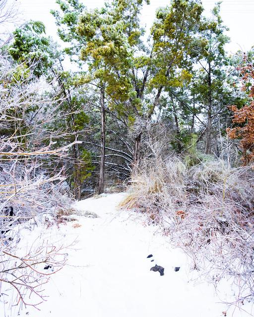 SnowStorm_075