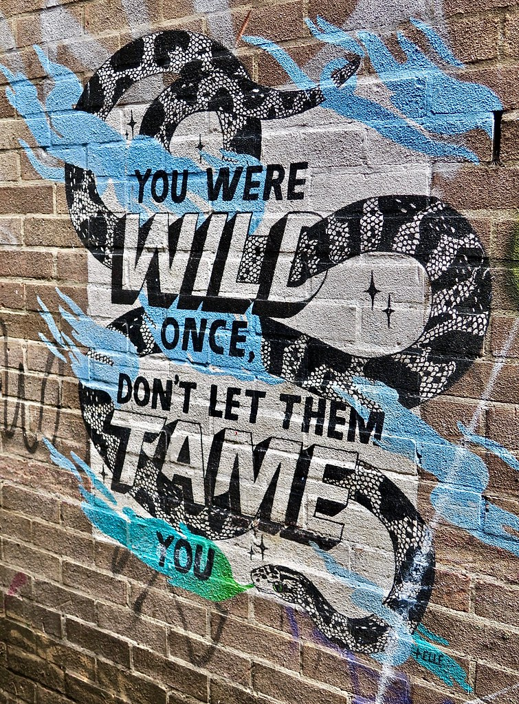 Don't Let Them Tame You, Bristol, UK