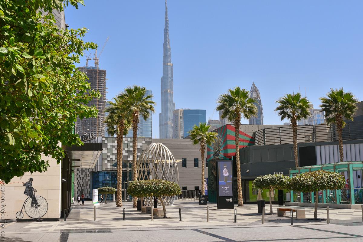 Dubai-2021-(2)