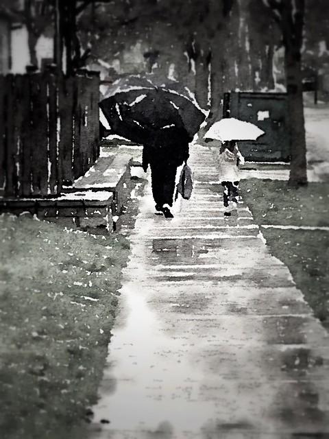 walk in the rain :: IN EXPLORE