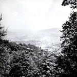 Sonntagsspaziergang Mai 1968 Uetliberg