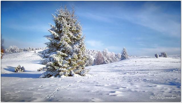 Stattberg im Schnee
