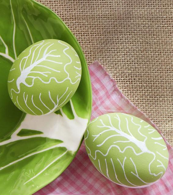 Lettuce / Cabbage Eggs