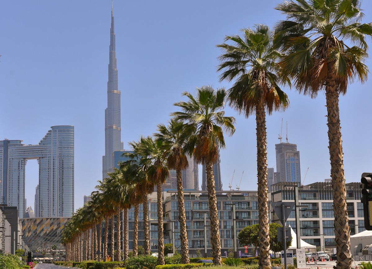 Dubai-2021-(3)