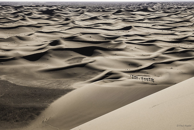 The endless expanse of the dunes