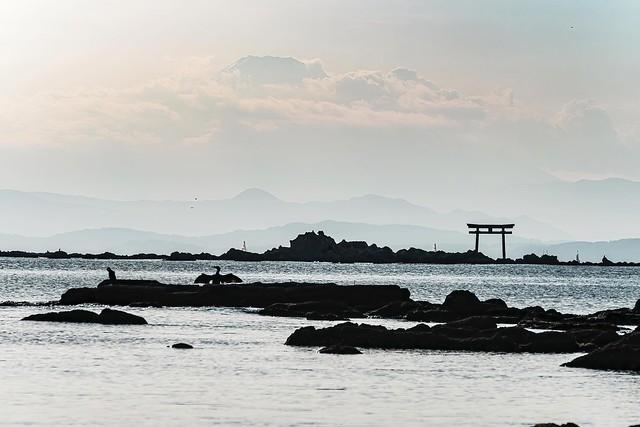 鳥と鳥居と富士山 @ 真名瀬