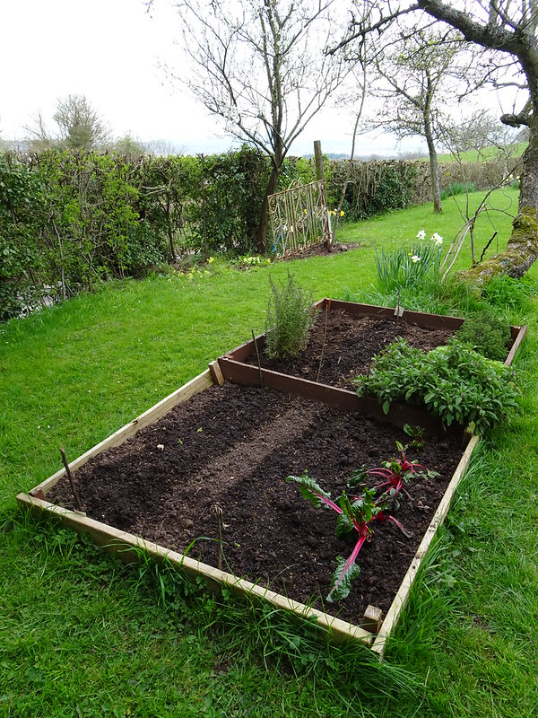 Veg Patch & Herb Bed, Orchard
