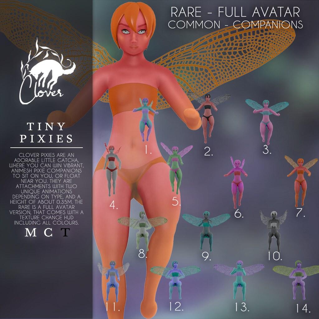 Clover – Tiny Pixies