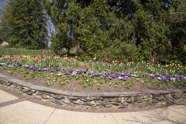 Brookside Gardens 6 Apr 2021   (146)_1