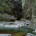 Passerelle dans les gorges de la Rivière des Galets