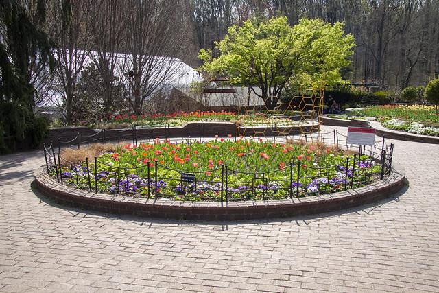 Brookside Gardens 6 Apr 2021   (144)