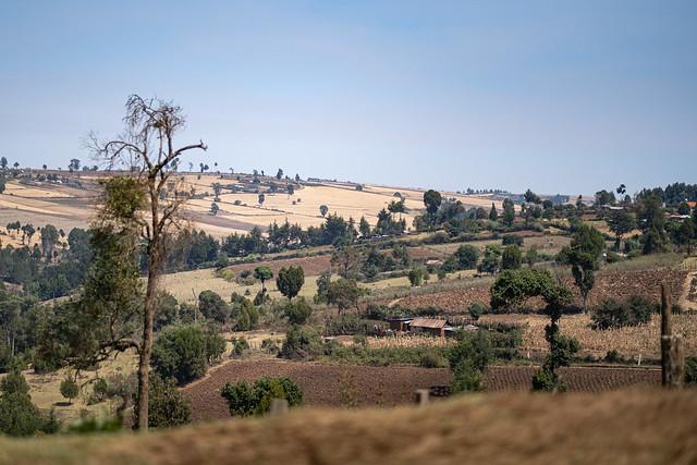 The Mau Escarpment in Great Rift Valley