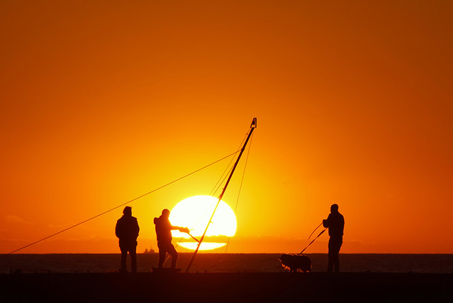 Three men and a dog in the sunset