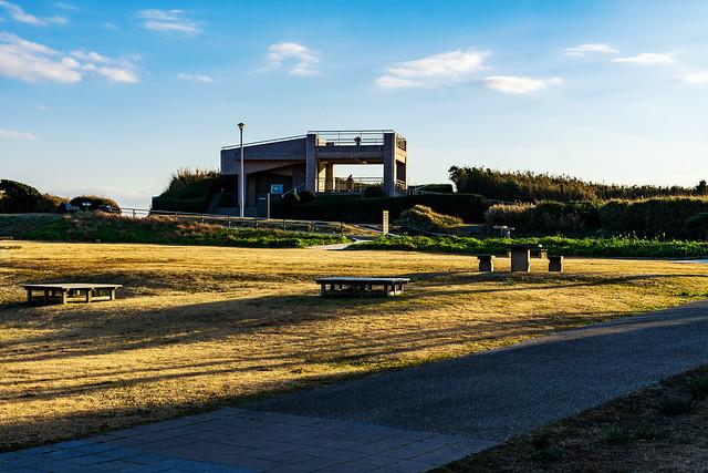 At Kanagawa Prefectural Jogashima Park : 神奈川県立城ヶ島公園にて