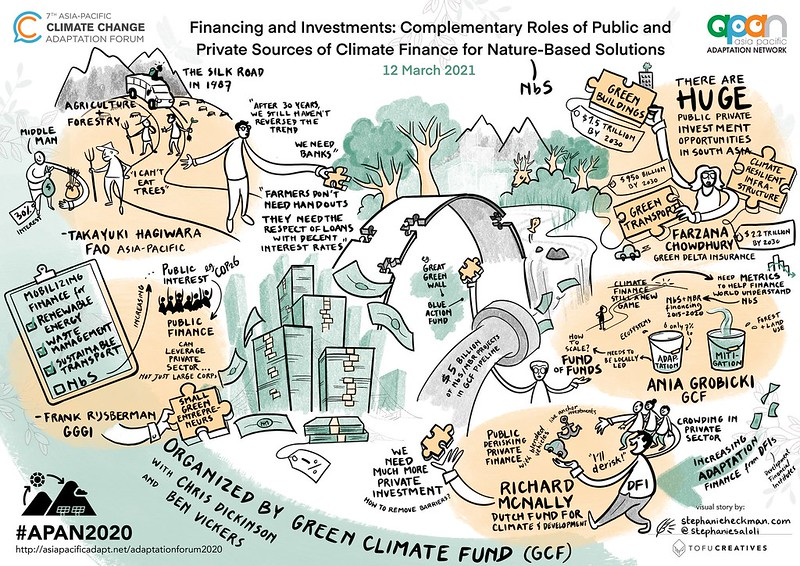 Financing and Investments. Complementary Roles of Public and Private Sources of Climate Finance for Nature-based Solutions