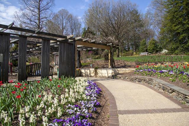 Brookside Gardens 6 Apr 2021   (145)_1