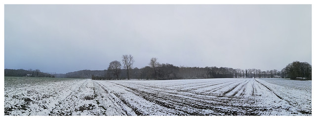 Wintry panorama in spring