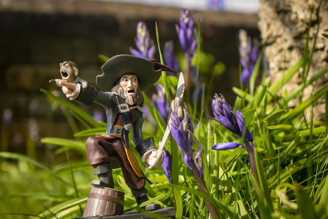 pirates and flowers 02