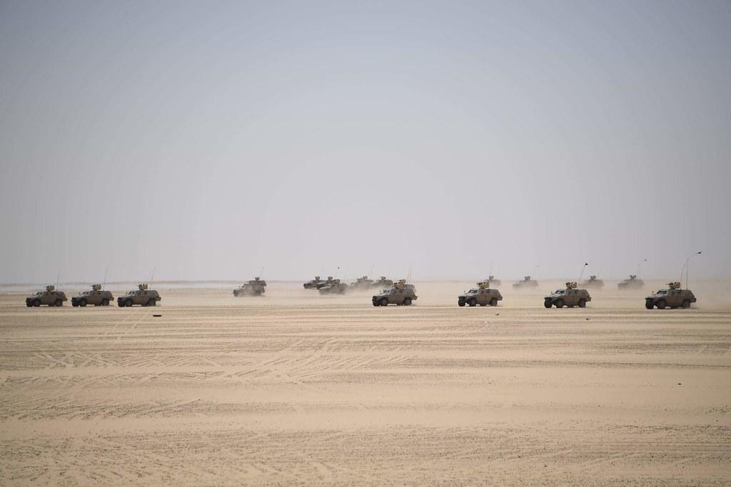 الصناعة العسكرية الجزائرية عربات Nimr(نمر)  - صفحة 13 51110989619_2153ffa366_b
