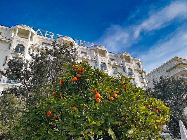 LEGENDARY 5 STAR HOTEL IN CANNES -IMG_20190113_100644