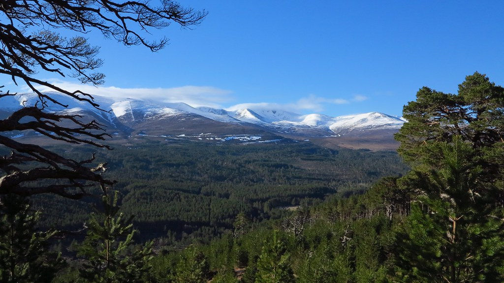 Cairngorm mountains IMG_7729