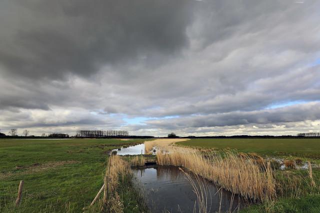 'Kleine kreek' Hulst - The Netherlands