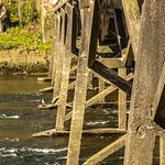 Bridge supports