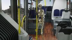 Skelett im Bus 0017