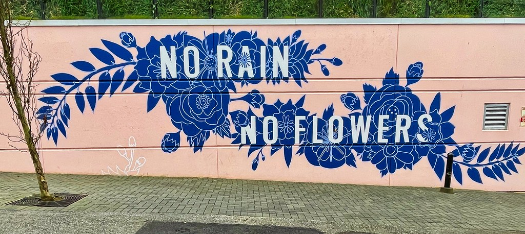 2021 - Vancouver - No Rain No Flowers by Thrive Art Studio