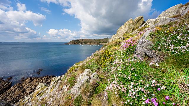 Sentier côtier couleurs printemps