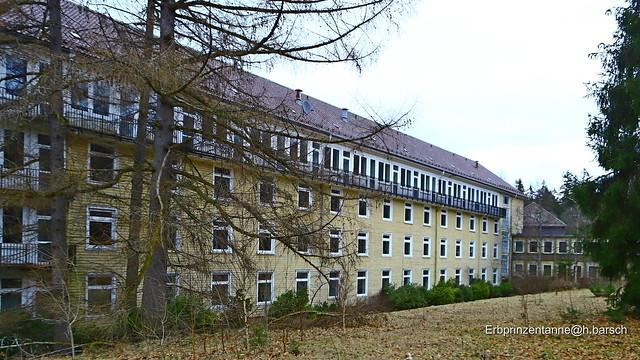 Erbprinzentanne Goslar