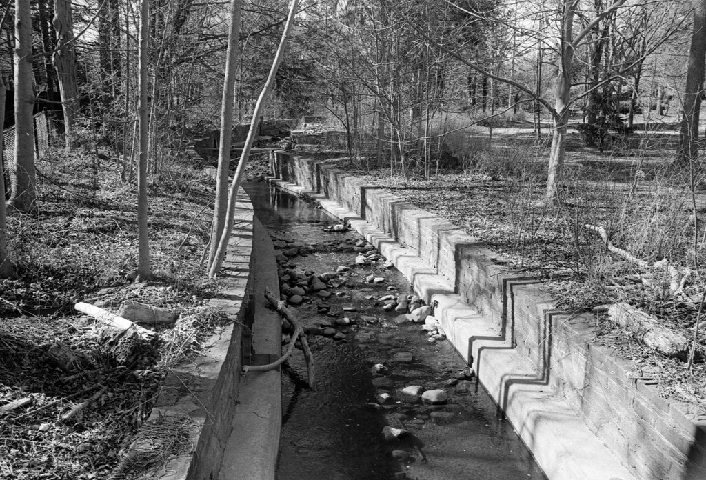 Wedgewood Creek Trench Looking North