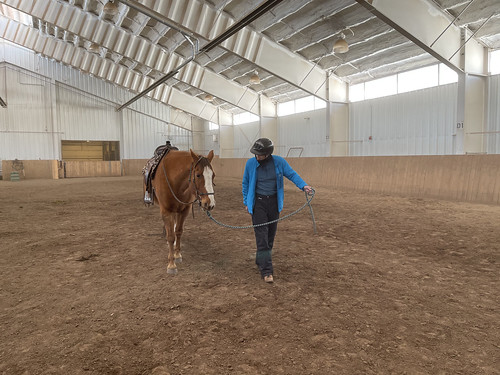 Ira working with a horse Inside Horse Arena. From History Comes Alive at Colorado's Vista Verde Ranch