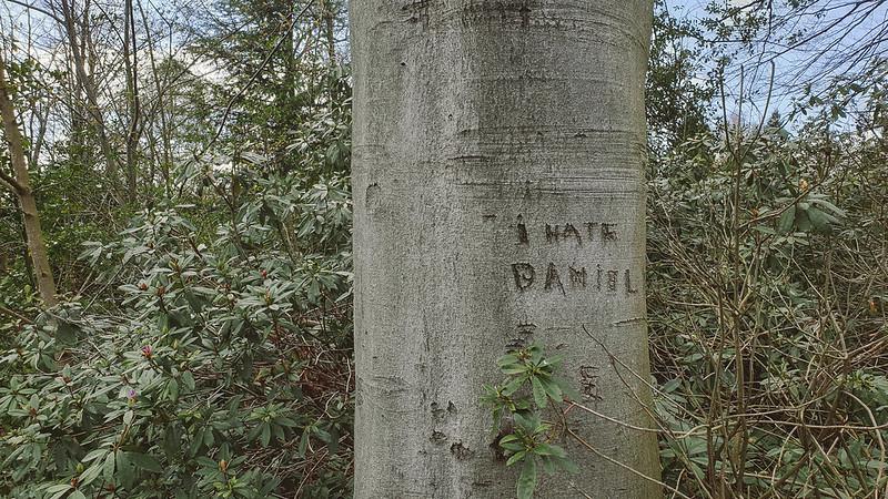 IK HAAT DANIEL