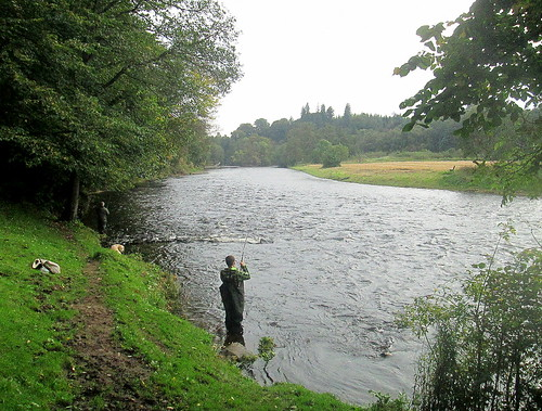 Fishing in River Teith
