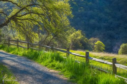 california spring landscape sierranevadafoothills woodenrailfence lightroom6 canon5dmarkiii topazstudio buttermilktrail southyubariverstatepark nevadacounty canonef24105mmf4lisusm