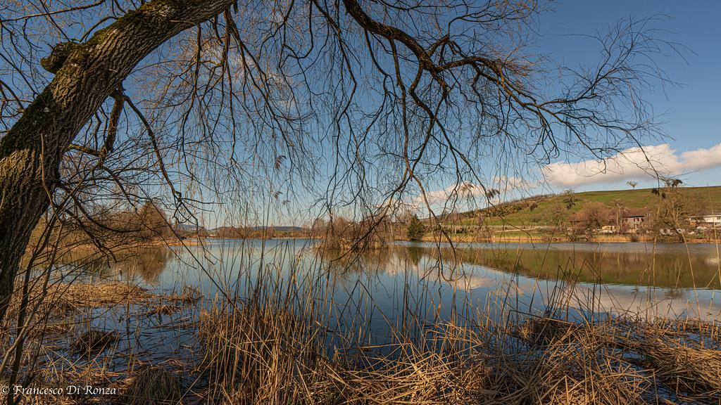 pond of Bettenauer .)2103/6903-14