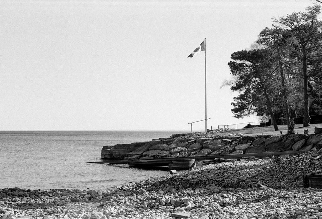 Flag on the Backyard Shore