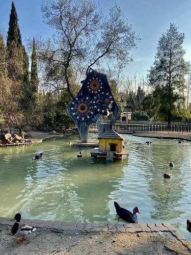 parque grande 1