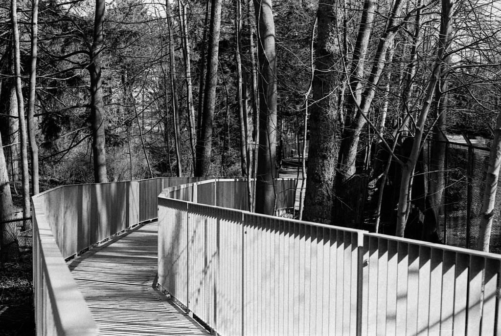 Path Ramp Down to Edgmere_