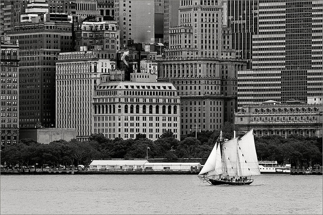 sailing in New York