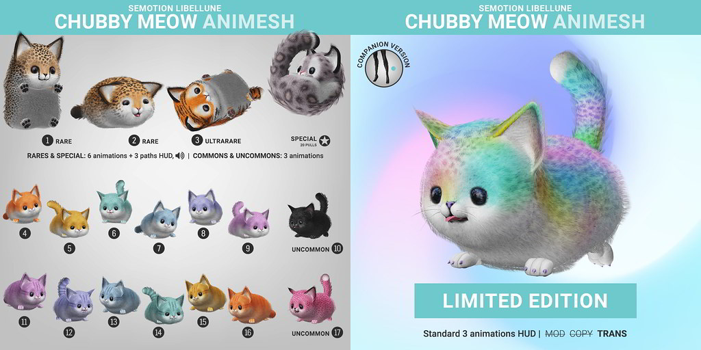 SEmotion Libellune Chubby Meow Animesh