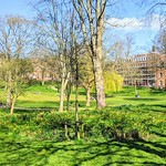 Spring at Winckley Square