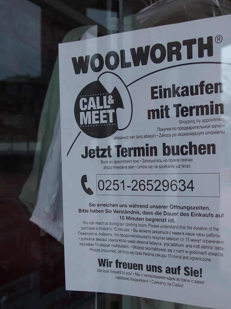 15 Minute Wolli Fame